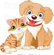 cute-puppy-and-kitty